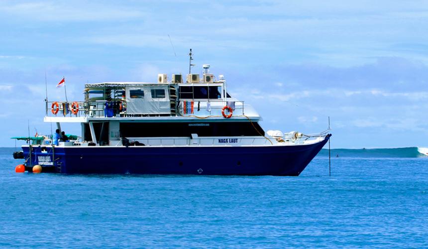Naga Laut Charter