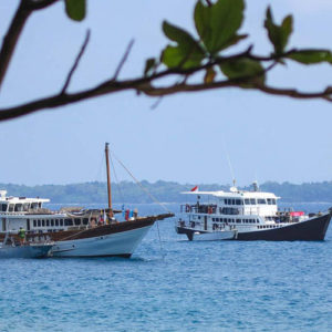 D'Bora Charter
